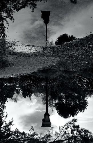 miyazugarden nelsonnz newzealand nouvellezélande parc park garden jardin asiagarden zengarden jardinasiatique jardinzen reflexion reflet noiretblanc blackandwhite light lumière lampadaire nikond5000 tamron18200