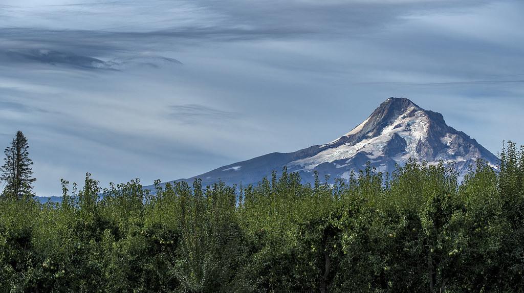 Mt. Hood from Hood River, Oregon