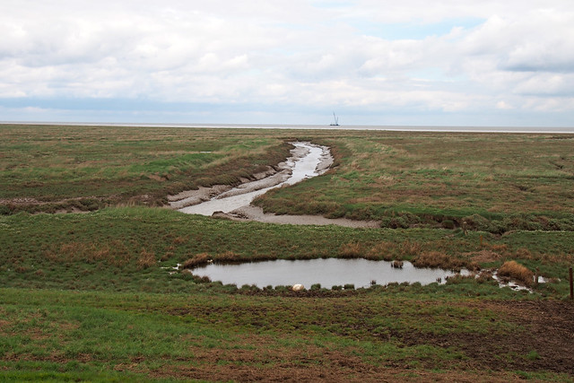 Marshes near Gedney Drove End