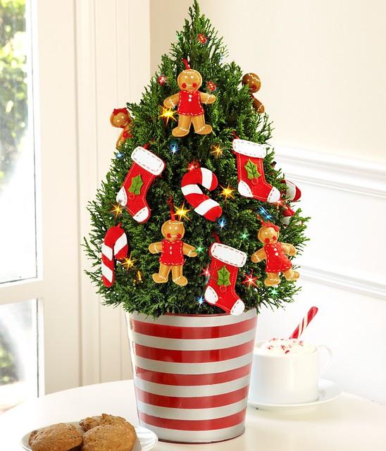 Stocking Tree