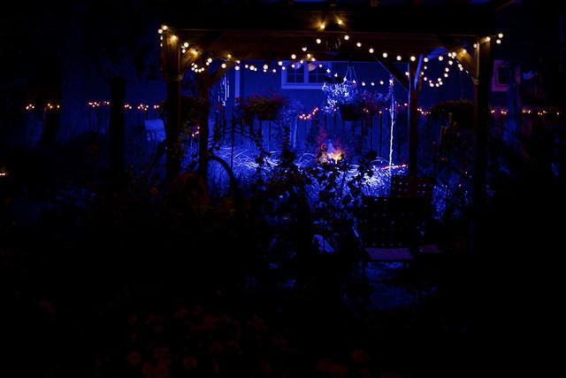 Nighttime Purple Courtyard