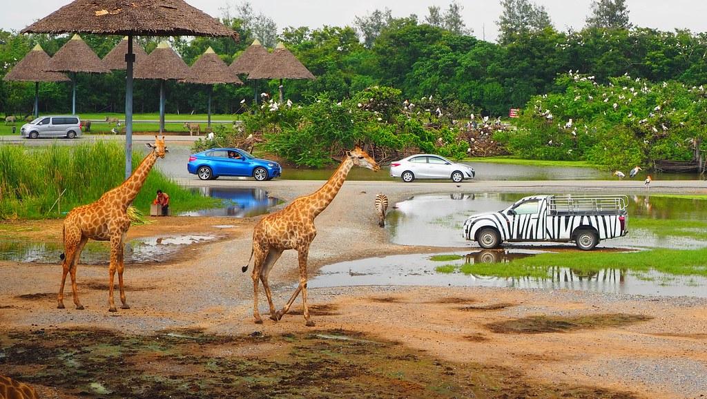 Safari World, Bangkok | OLYMPUS DIGITAL CAMERA | Flickr