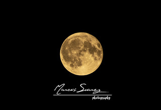 Luna llena | by MSR_PHOTOGRAPHY