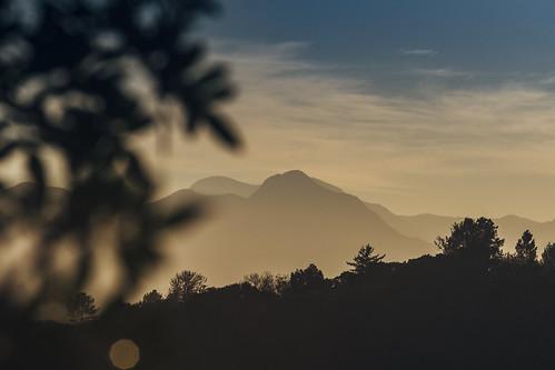 Early Mornings 1 | by Ryan Jarrett 4130