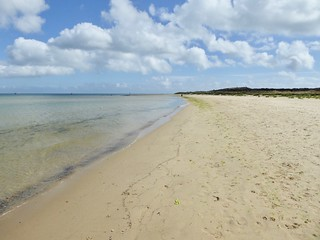 Shell Bay Branksome to Swanage walk
