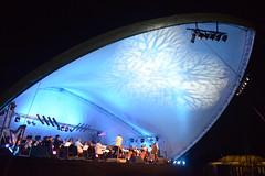DPC Orchestra 13 - Credit Robert Day