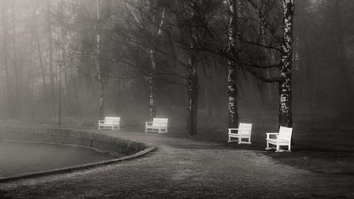 suomi brouillard fog sumu scenery mist outdoors finland helsinki kulosaari paysage air spo finlande monochrome