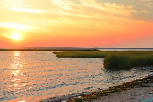 canon sl2 sunset sea grass sky sun water sand landscape