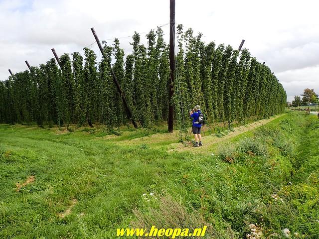 2018-08-23 Poperinge 35 Km  (100)