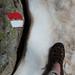 Slunce, teplo, sníh je dostatečně tvrdý, jde to i v sandálech, foto: Petr Nejedlý