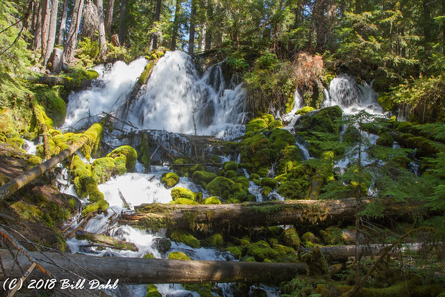 Clearwater Falls - 4