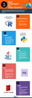 Top 5 Languages for Data science   by iClass Gyansetu  Infographic