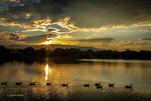 clouds colorado geese kendricklake lakewood landscape outdoors sky usa water