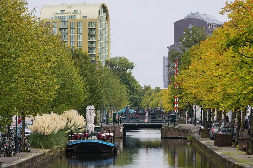 Het groen langs de Haagse gracht