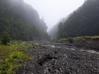 Drumetie in Azuga, Muntii Baiului | by mergpemunte.ro