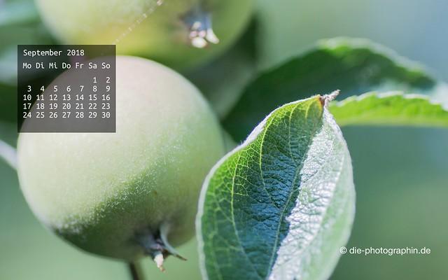 092018-apfel-wallpaperliebe-diephotographin
