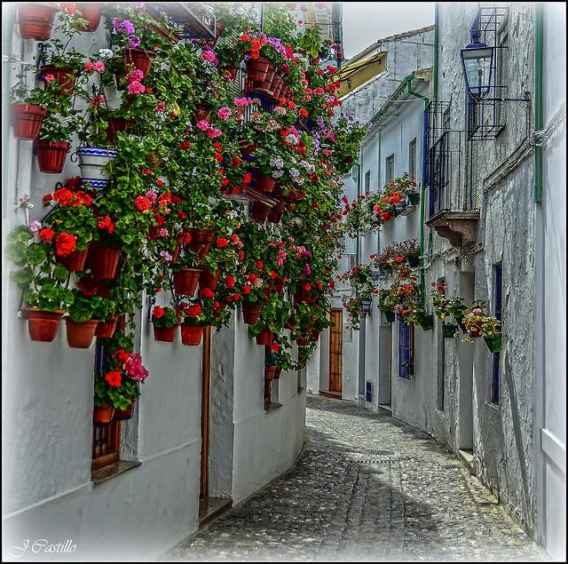 Calle de Priego de Cordoba (Andalucía)