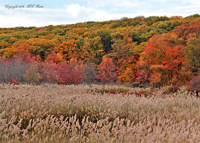 An October Day Trip to See the Fall Foliage and Reflections in Lakes at Harriman State Park NY