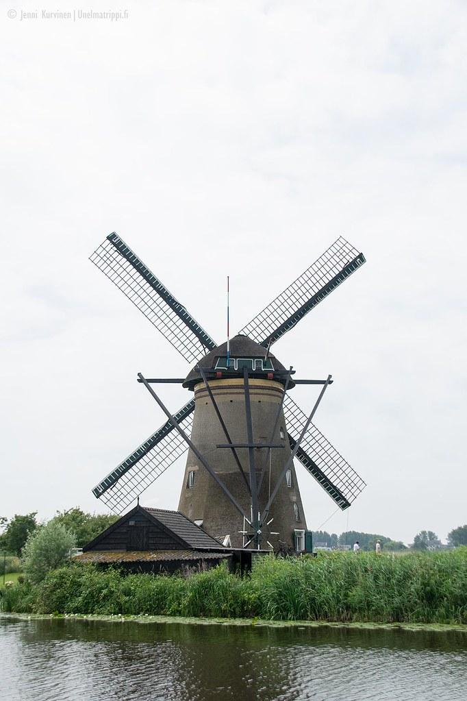 Vanha tuulimylly Kinderdijkissa