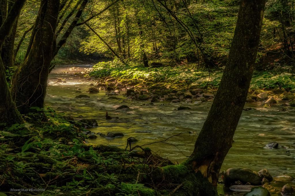 S potoka Curka (3)