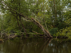 The Kalamazoo River in Parchment, Michigan