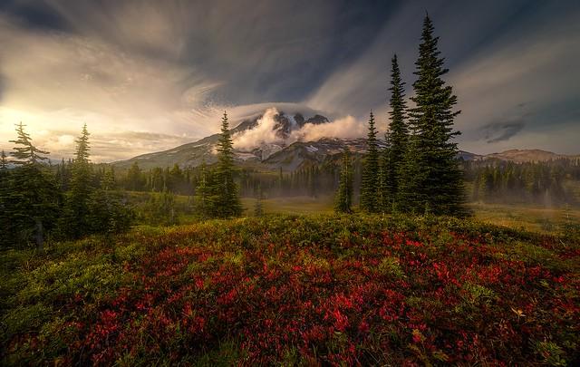 Reconciling Seasons