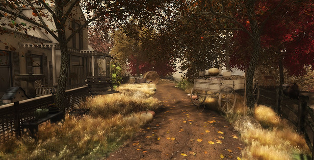 Road to Autumn...
