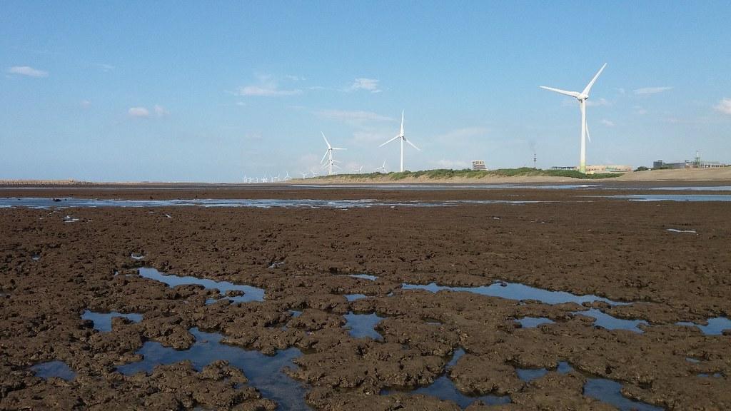 桃園藻礁歷史已超過7500年,是海洋生物的育嬰房。藻礁生態調查。圖片來源:李彥輝提供