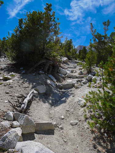 Met the Shepherd's pass trail, oh you wanted to be back on trail after all that talus? Here, just go STRAIGHT UP | by snackronym