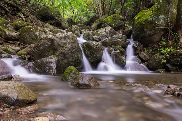 #254 mountain stream