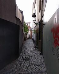 Ooievaarstraat / Rue de la Cigogne #alleygram