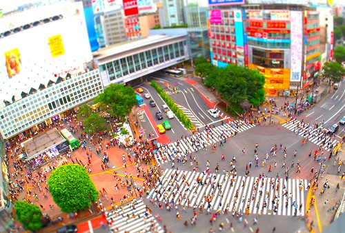 P1010133_TiltShift | by siwamasa1