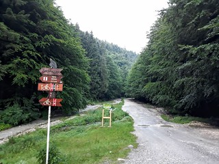 Drumetie in Piatra Craiului - Zarnesti-Creasta Nordica (1) | by mergpemunte.ro