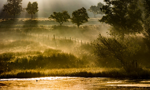 nationaltrust peakdistrict peakdistrictnationalpark longshawestate derbyshire longshaw duckpond autumn mistymorning morning sunrise shadows