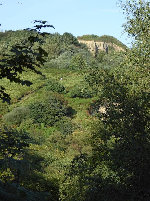 Fairlight Glen Hastings to Winchelsea via Three Oaks walk