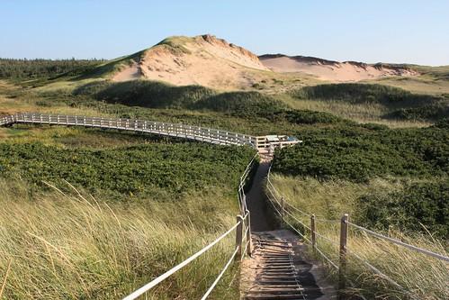 greenwich pei canada trails dunes sand sanddunes nationalpark