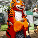 Hugs with the Tiger Who Came To Tea | © Robin Mair
