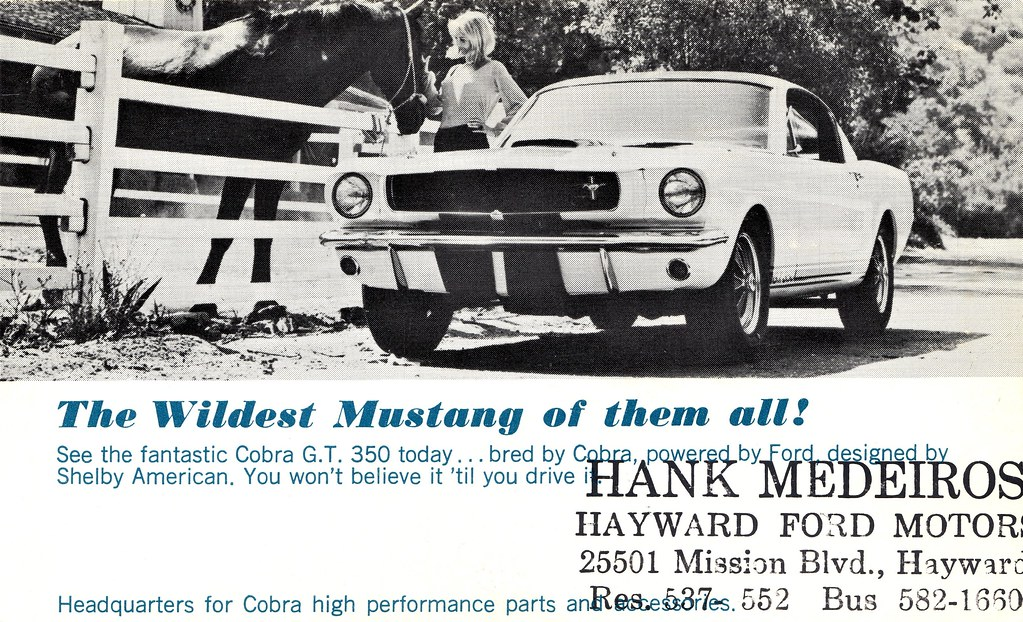 1965 Shelby Cobra G T  350 | A rare original Shelby Mustang