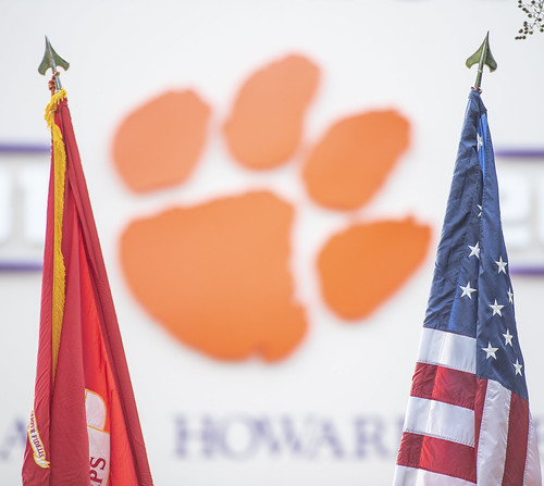 flags and paw