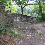 Die Ruine der Isenburg am Rande des Schellenberger Waldes