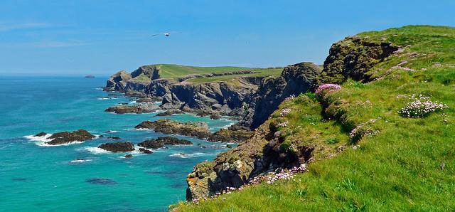On the coast path, Trevone, Cornwall, England