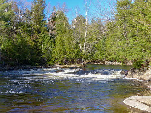 Oxtongue River - Ragged Falls Provincial Park (1) | by Brown Bear Travels