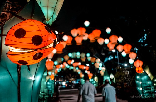 Mid Autumn Festival 2018 | by TheViewDeck