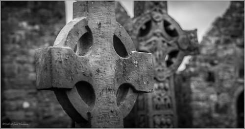 clonmacnoise irlanda ireland monastero antico rovine