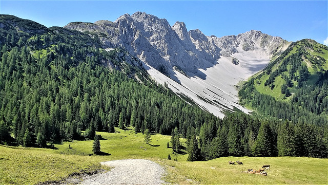 Hochfeldern Alm im Gaistal (1750m), Tirol - Austria (112844181)