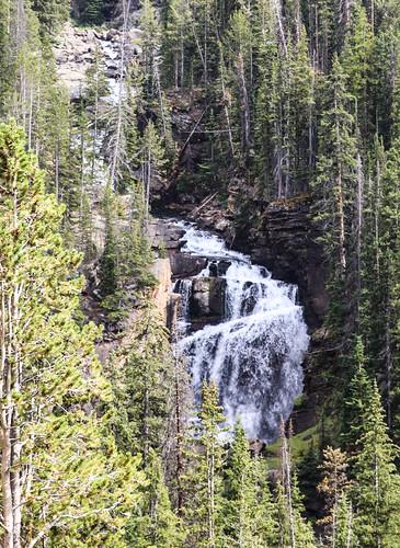 wyoming shoshonenationalforest beartoothhighway beartoothmountains beartoothravine beartoothfalls canyon waterfall cascade stream creek beartoothcreek trees wyojones np