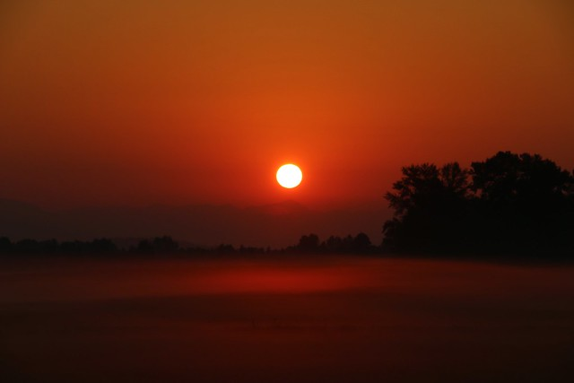 Smoky Sunrise Over Foggy Fields