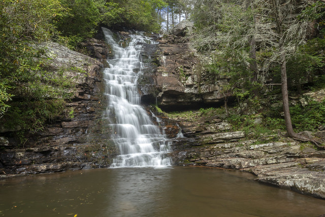 Chestnut Mountain Falls, South Cherokee NF & WMA, Polk County, Tennessee