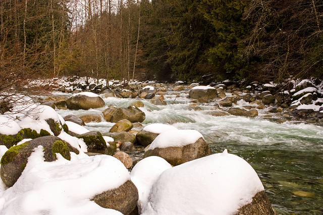 Lynn Creek @ Varley Trail - Lynn Headwaters Regional Park