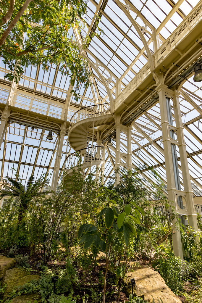 Kew Gardens' Temperate House opens after £41m restoration